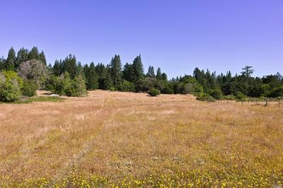 16000 COLEMAN VALLEY RD, Occidental, CA 95465 - Photo 2