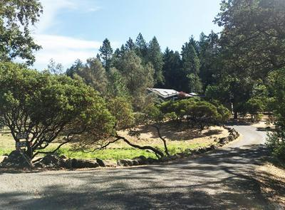 620 WHITE COTTAGE RD N, Angwin, CA 94508 - Photo 2