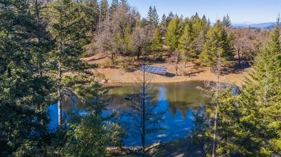 55725 REGISTERED GUEST RD, LAYTONVILLE, CA 95454 - Photo 1