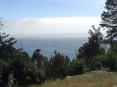 22108 LEE DRIVE, Timber Cove, CA 95401 - Photo 1