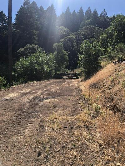 15851 RIDGEVIEW RD, Willits, CA 95490 - Photo 2
