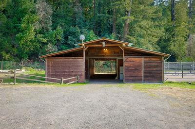 15015 ARMSTRONG WOODS RD, GUERNEVILLE, CA 95446 - Photo 2