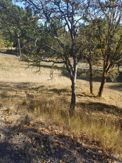 2023 PEACOCK DR, Willits, CA 95490 - Photo 2