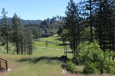 14636 LEMA LN, Cobb, CA 95426 - Photo 2