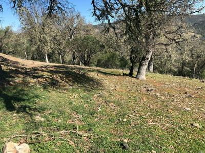 0 0 HARNESS DRIVE, Pope Valley, CA 94567 - Photo 2