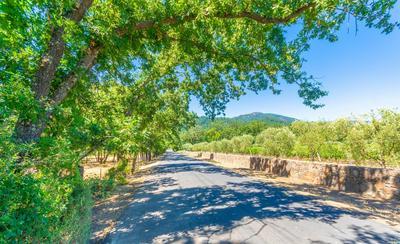 1353 BELLA OAKS LN, Rutherford, CA 94558 - Photo 1