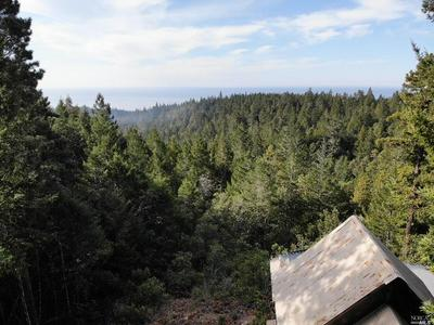 36228 OLD STAGE RD, Gualala, CA 95445 - Photo 2