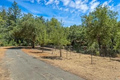 260 FRANZ VALLEY SCHOOL RD, Calistoga, CA 94515 - Photo 2
