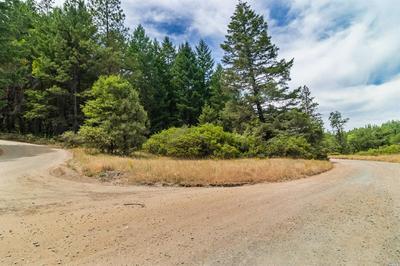 0 TEN MILE CREEK ROAD, Laytonville, CA 95454 - Photo 2