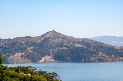 164 CRESCENT AVE, Sausalito, CA 94965 - Photo 2