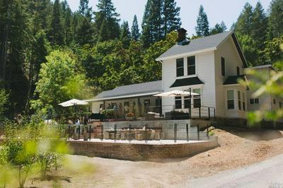 16790 ARMSTRONG WOODS RD, Guerneville, CA 95446 - Photo 1