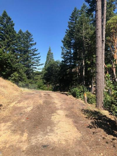 15851 RIDGEVIEW RD, Willits, CA 95490 - Photo 1