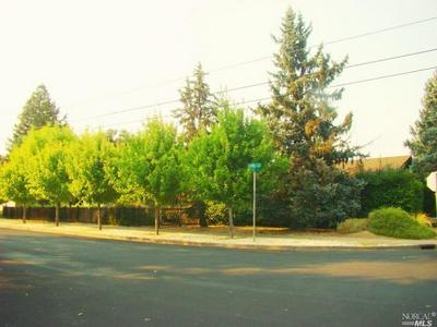 1301 S OAK ST, Calistoga, CA 94515 - Photo 2