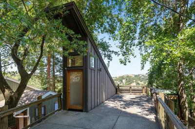 257 SCENIC RD, Fairfax, CA 94930 - Photo 1