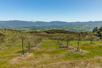 2021 DUNCAN SPRINGS RD, Hopland, CA 95449 - Photo 2