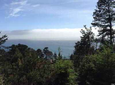 22108 LEE DRIVE, Timber Cove, CA 95401 - Photo 2
