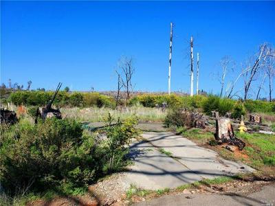 15346 GLENN RD, Cobb, CA 95426 - Photo 2