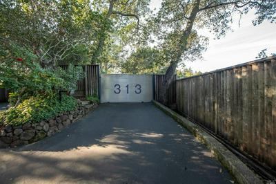 313 UPPER TOYON DR, Ross, CA 94957 - Photo 2