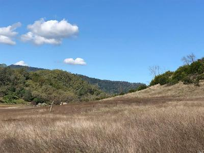 7885 BUTTS CANYON RD, Pope Valley, CA 94567 - Photo 1