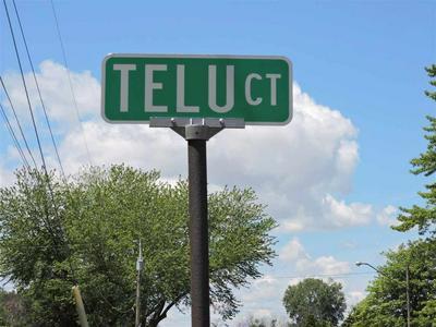 0 TELU CT, Linwood, MI 48634 - Photo 2