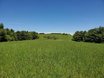 0 PLUMLEY MOUNTAIN ROAD, HINTON, WV 25951 - Photo 1