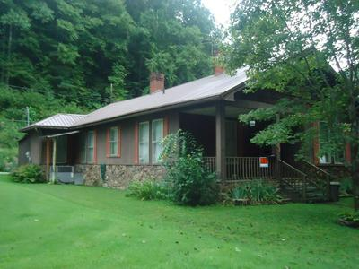 78 SNAKE ROOT BRANCH RD, WELCH, WV 24801 - Photo 1