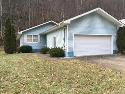383 YEAGER DR, WILLIAMSON, WV 25661 - Photo 1