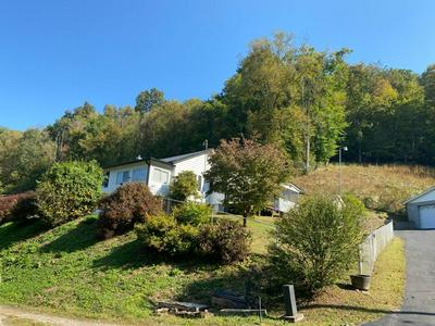 420 OLD COUNTRY RD, NAOMA, WV 25062 - Photo 1