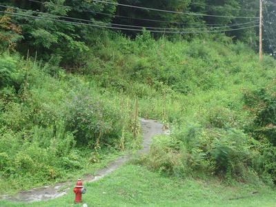25 CENTRAL AVE, WELCH, WV 24801 - Photo 1