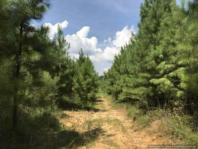 1270B GLOSTER RD, Meadville, MS 39653 - Photo 2