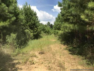 1270A GLOSTER RD, Meadville, MS 39653 - Photo 1