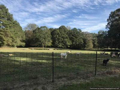 304B SMITH FERRY RD, Sontag, MS 39665 - Photo 1