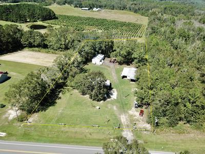 1735 HIGHWAY 2, Westville, FL 32464 - Photo 2