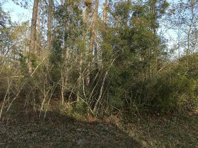13218 HIGHWAY 2301, YOUNGSTOWN, FL 32466 - Photo 1