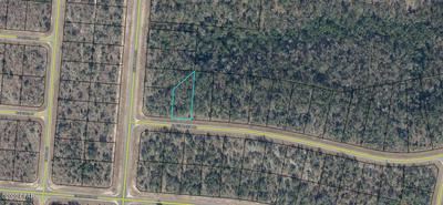 LOT 25 GREENBRIER DRIVE, Chipley, FL 32428 - Photo 1