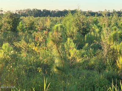 00 NEALS LANDING RD, Bascom, FL 32423 - Photo 1
