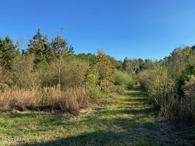 000 STATE RD 177A, Bonifay, FL 32425 - Photo 1