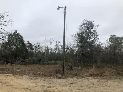 000 PORTER GRADE ROAD, ALTHA, FL 32421 - Photo 1