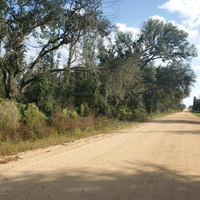 000 DELLWOOD-CYPRESS ROAD, Marianna, FL 32446 - Photo 1