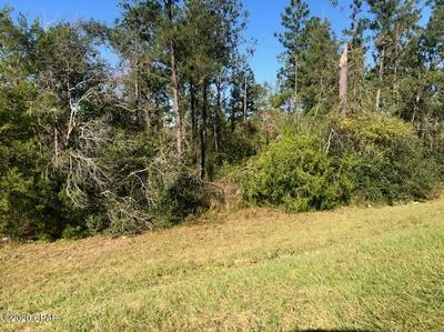 0 FAIRVIEW ROAD, Alford, FL 32420 - Photo 2