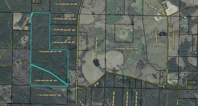 0000 SANDY CREEK ROAD, Westville, FL 32464 - Photo 1