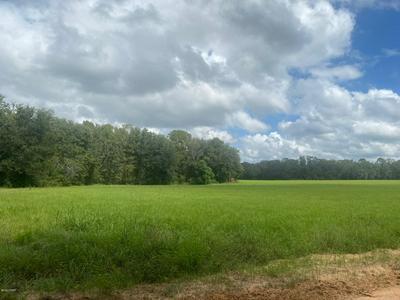 0 BENTLEY ROAD, Cottondale, FL 32431 - Photo 2