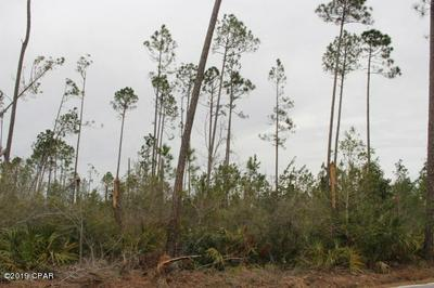 0 PURDEE ROAD, Altha, FL 32421 - Photo 1