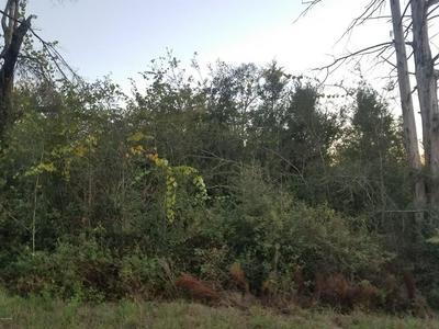 0 COX AVENUE, ALTHA, FL 32421 - Photo 1