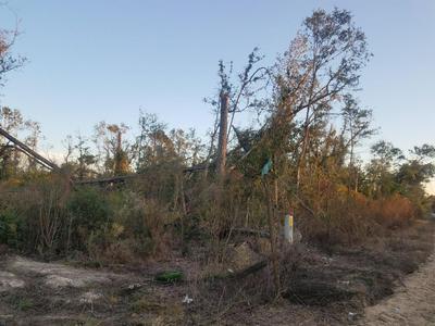 00 TINDAL DRIVE, ALTHA, FL 32421 - Photo 1