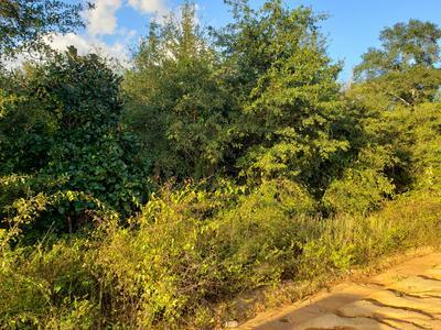 000 OVERPASS ROAD, Campbellton, FL 32426 - Photo 2