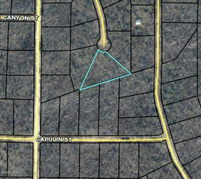 TBD ANDREW COURT, Alford, FL 32420 - Photo 1