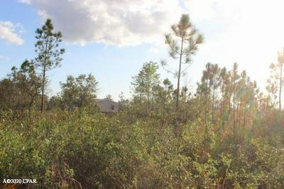 0 NW ISOLETTA ROAD #LOT 3-A, ALTHA, FL 32421 - Photo 1