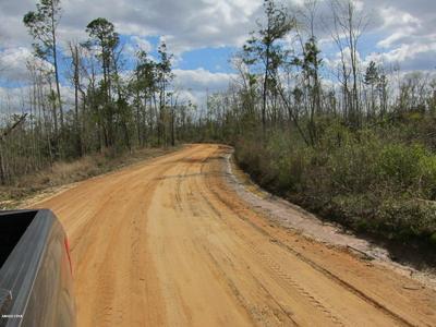 00 N DOG WOOD LN NW, Altha, FL 32421 - Photo 1