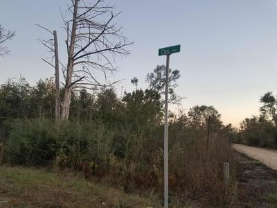 000 COX AVENUE, ALTHA, FL 32421 - Photo 1
